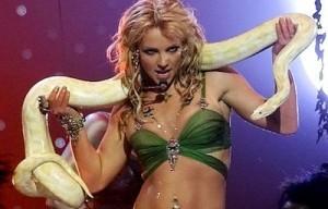 HPR-Britney-Snake-300x192
